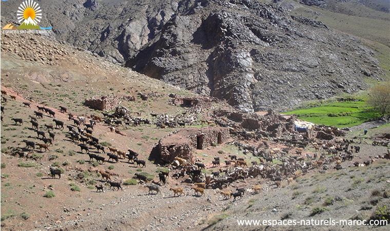 trek les villages berber de tassaout